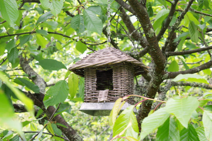 Wicker bird house hanging from a tree.
