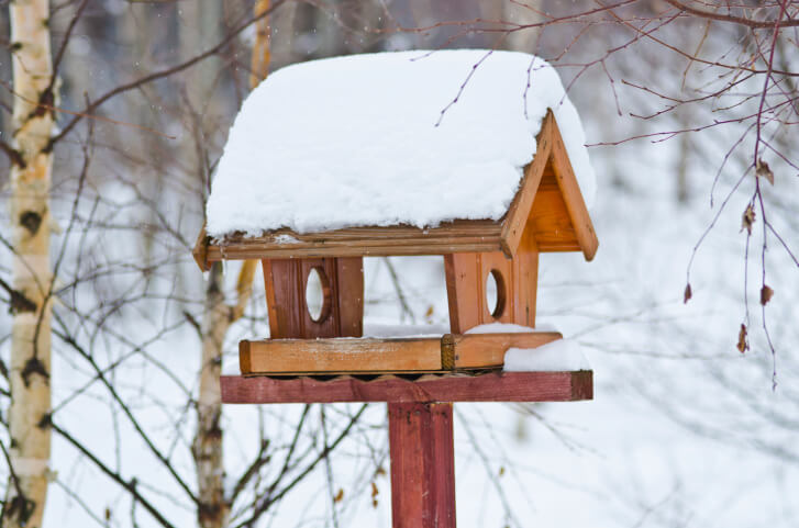 Pavilion style bird house. This design has no walls and serves as a bird shelter and feeder.