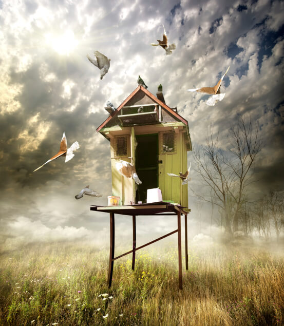 Large realistic style of bird house placed on a platform in a field with birds flying around. Yes, this image was edited extensively in a photo editor.