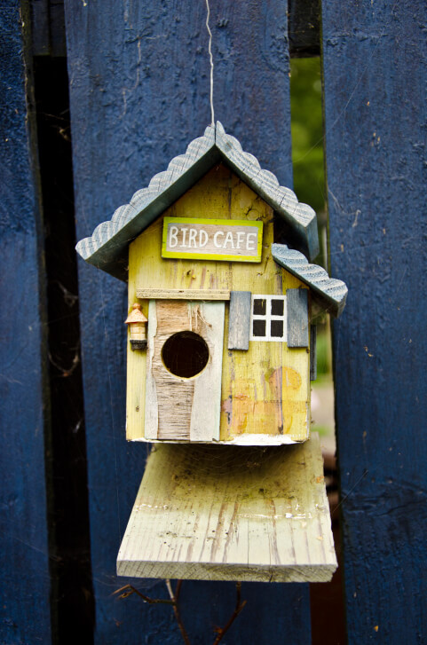 Small bird house called a Bird Cafe attached to a blue fence.