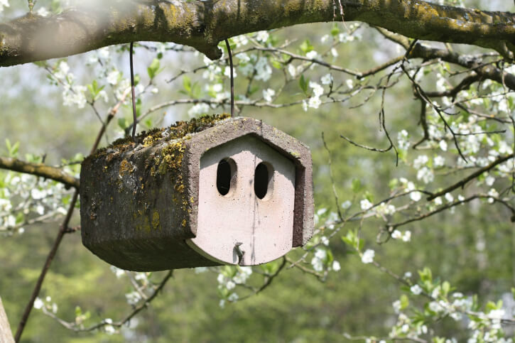 Unique cylinder style bird house hanging from a tree branch.