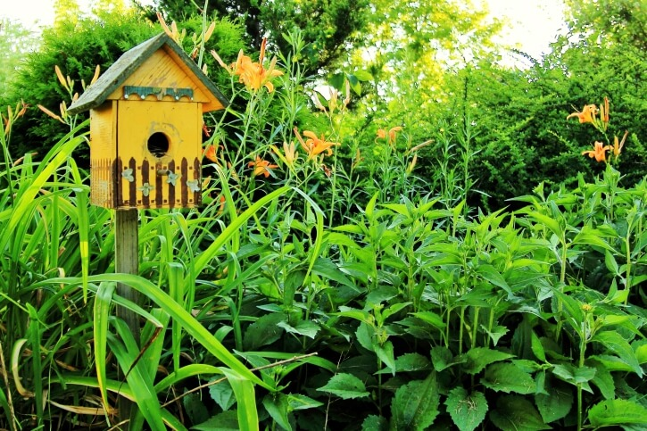Yellow and green painted bird house with picket fence paint design set on a post in a lush garden.