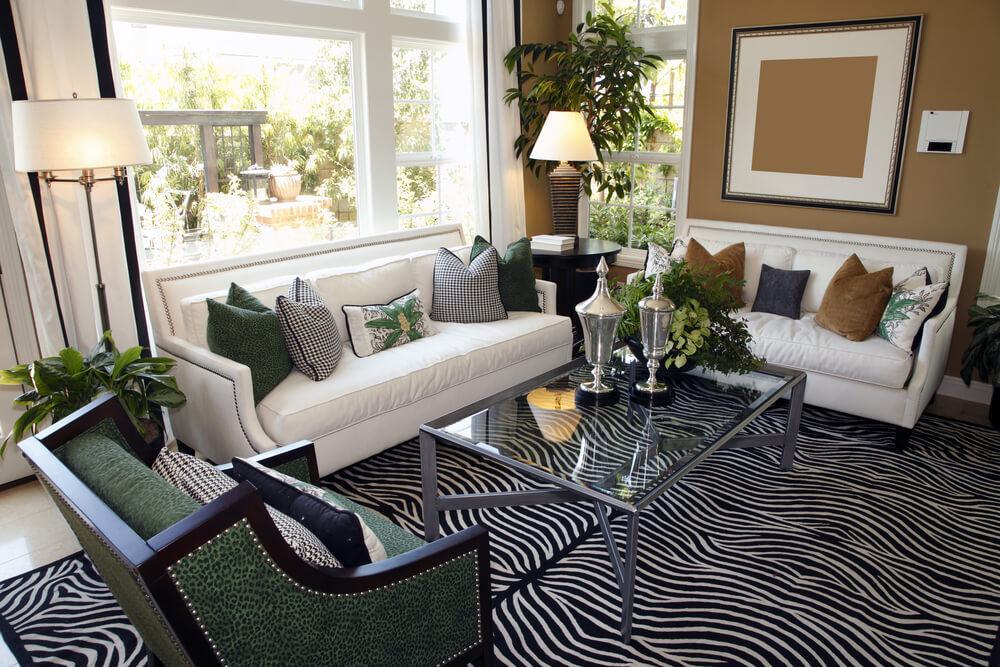 Living Room Design With Two White Sofas Taupe Walls And Zebra Area Rug Glass Coffee