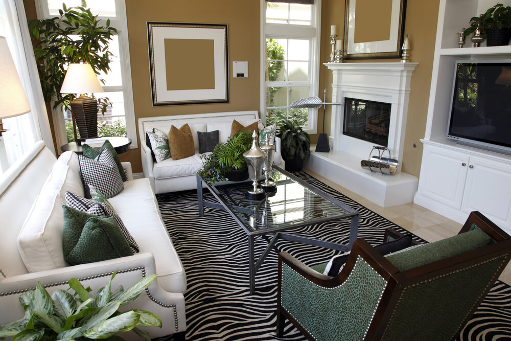 Living Room Design With Two White Sofas Taupe Walls And Zebra Area Rug