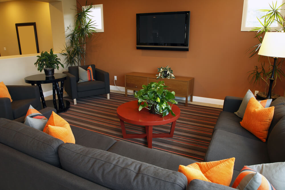 Orange And Grey Living Room Ideas Carameloffers Best