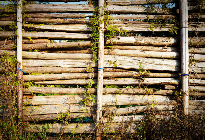 This fence is a combination of horizontal branches and hewn log vertical posts.