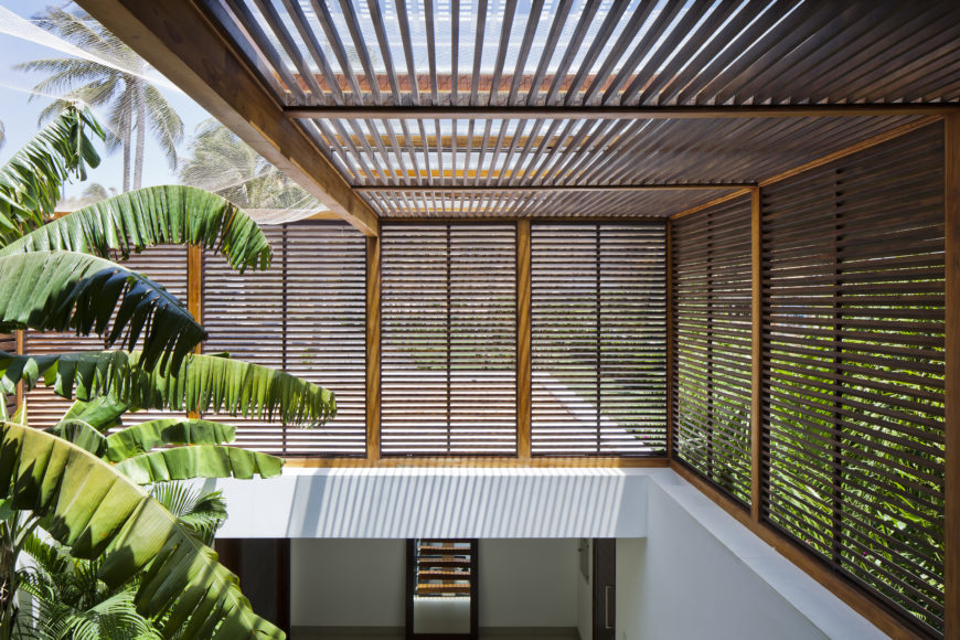Inside the shade afforded by the dark timber louvers, mosquito netting allows for sunshine and air to feed the extensive interior garden space.