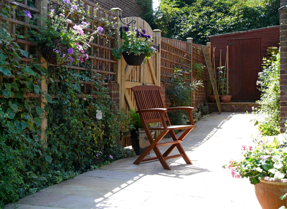 Patio with lattice fence with plants climbing up the lattice work.