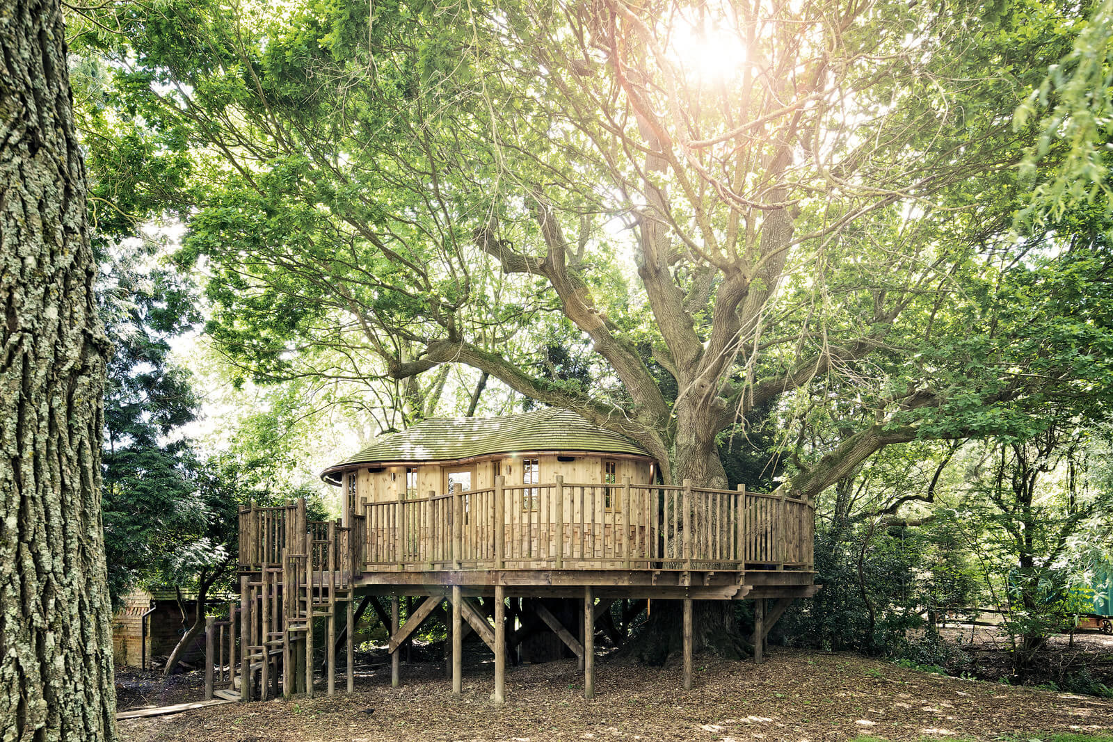 Whimsical Tree House Design For Adults This Is An Actual