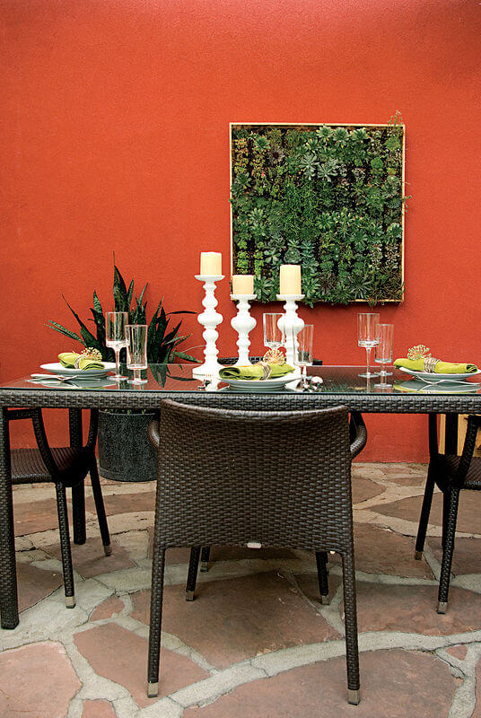 Custom burnt sienna stucco wall brings vibrant color to the courtyard, with unique framed succulent garden serving as living art.