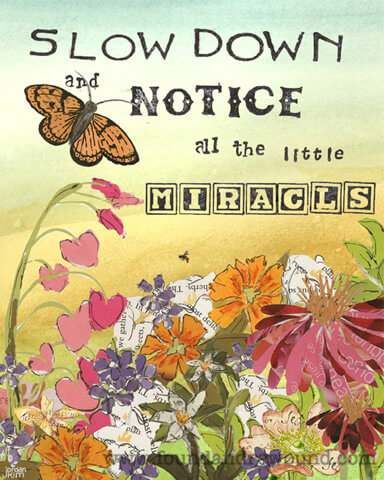 "Inspirational art by Jordan Kim of Found & Rewound features collage of butterfly and flowers with the quote,  ""Slow Down & Notice all the Little Miracles"""