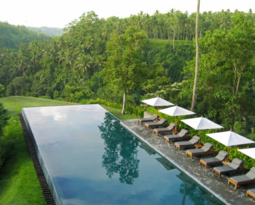 Rectangle infinity pool in the middle of a jungle.
