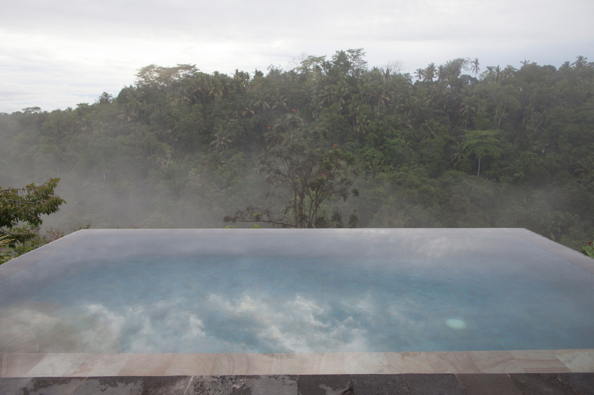 The morning mist rising up through the trees creates an eerie calm on the reflection of the pool.