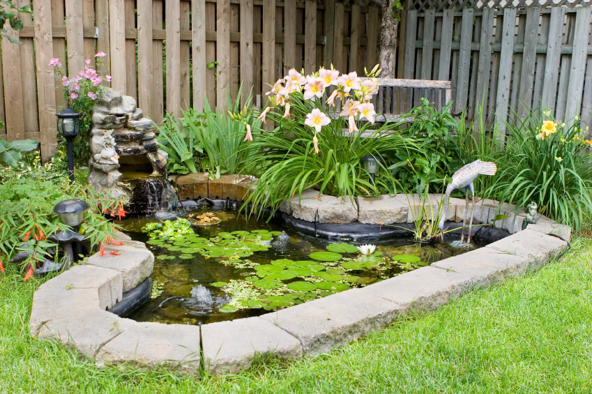 37 backyard pond ideas designs pictures
