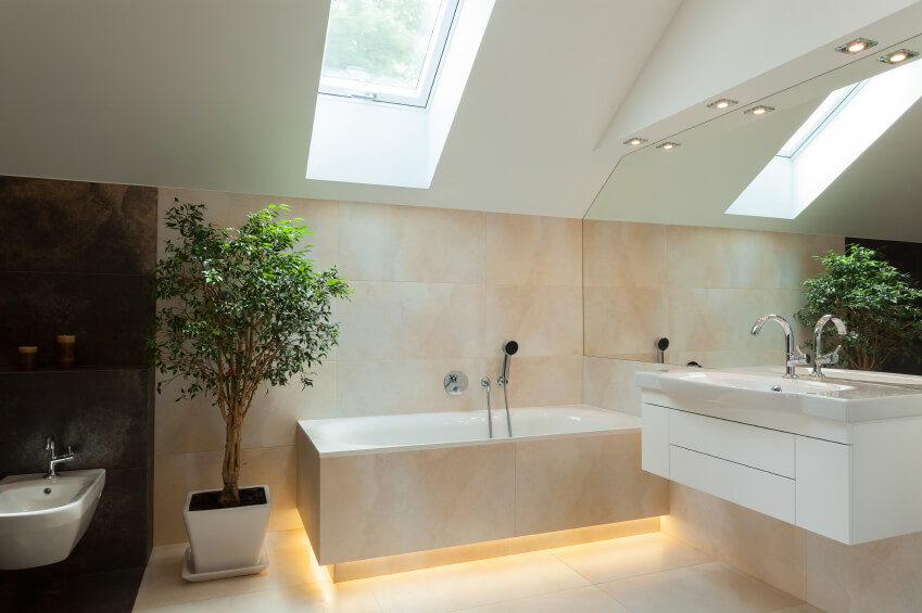 A cool, contemporary bathroom with a darker portion with the commode. Between the two sections is a large, leafy tree. Lighting beneath the rim of the soaking tub is a nice detail.