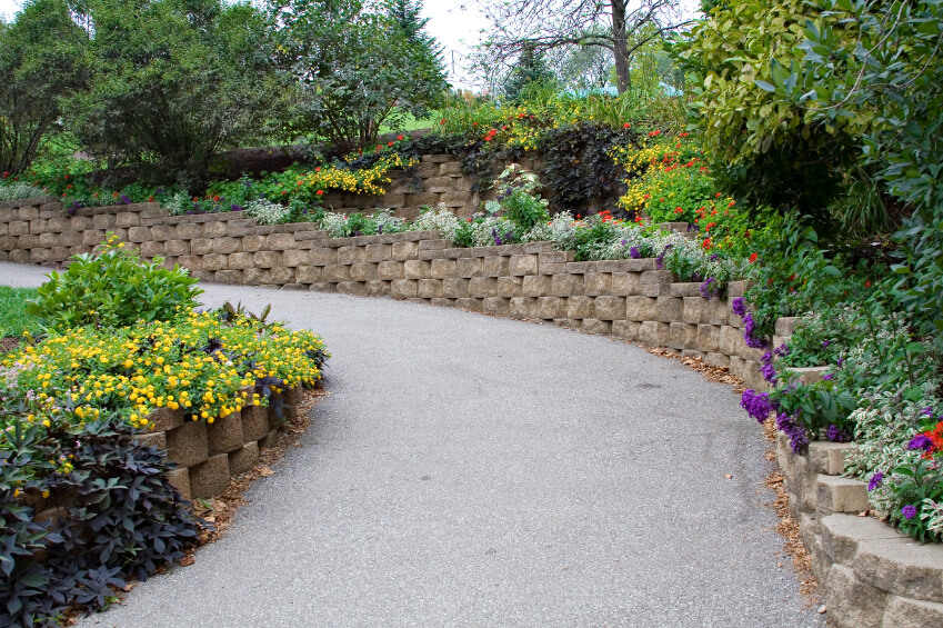A Stone Retaining Wall That Snakes Around Either Side Of A Paved Pathway.  Ornamental Trees