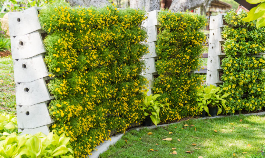 A concrete terrace fence that uses thick flowering plants to fill in the gaps for privacy.