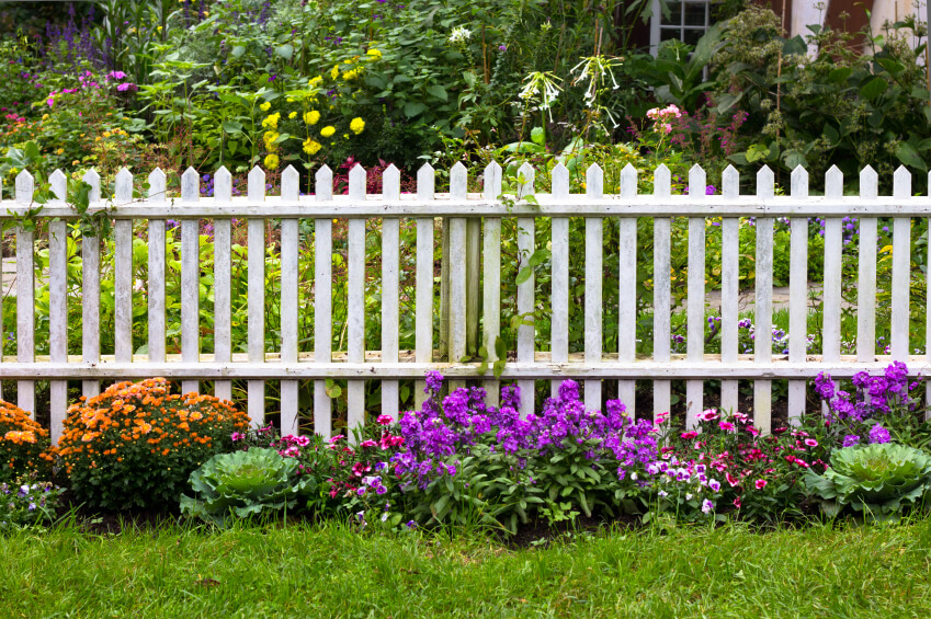 A wooden white picket fence separating two sections of a garden.