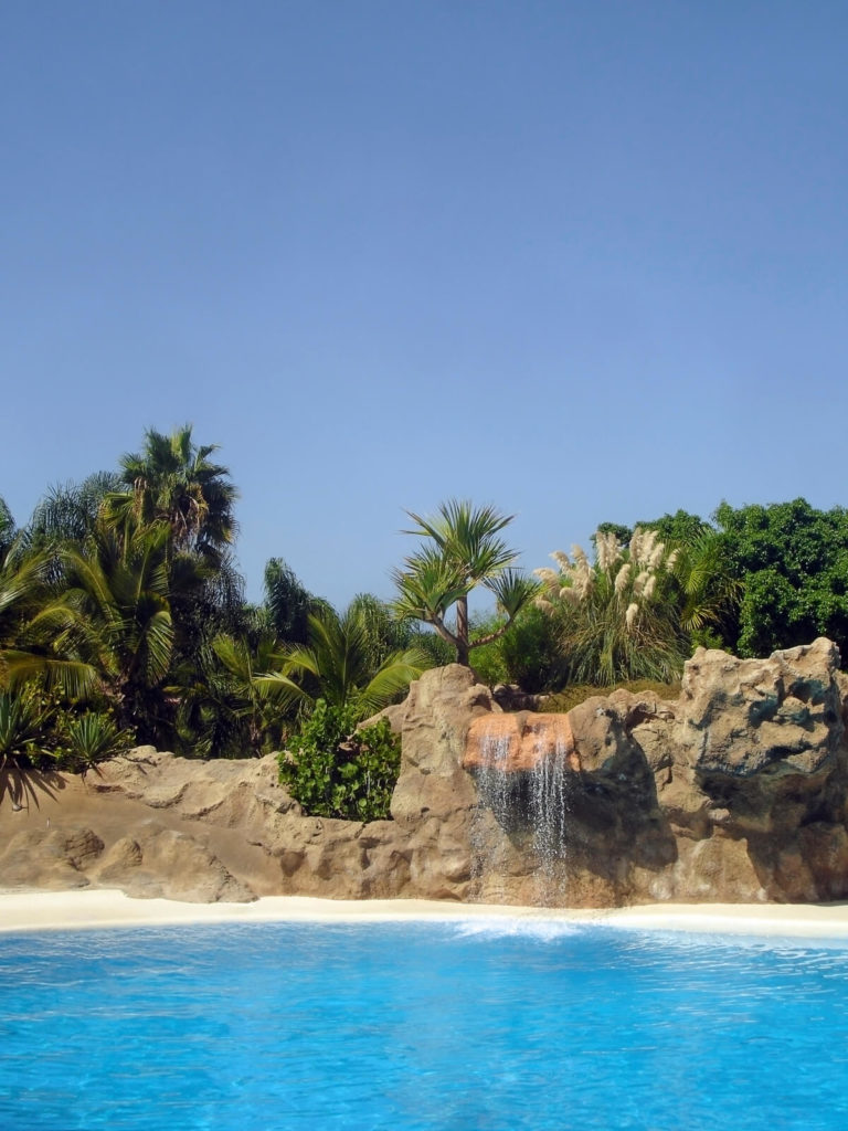 A small waterfall flowing into the pool. The sides of the pool are made to look like a rocky beach with a thick forest of palms behind the artificial stones.