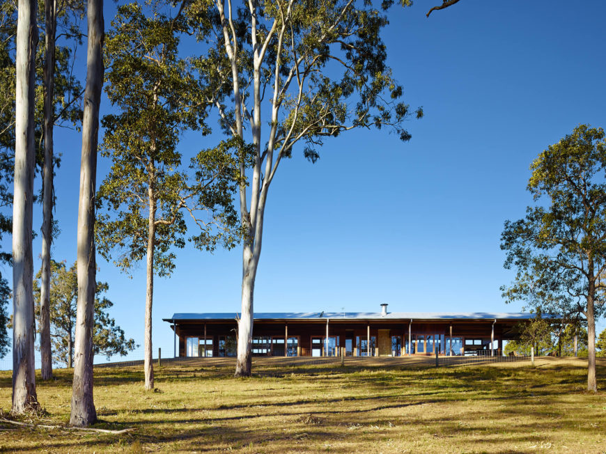 Surrounded by towering eucalypts and an undulating landscape, the natural-material modern home fits in perfectly.