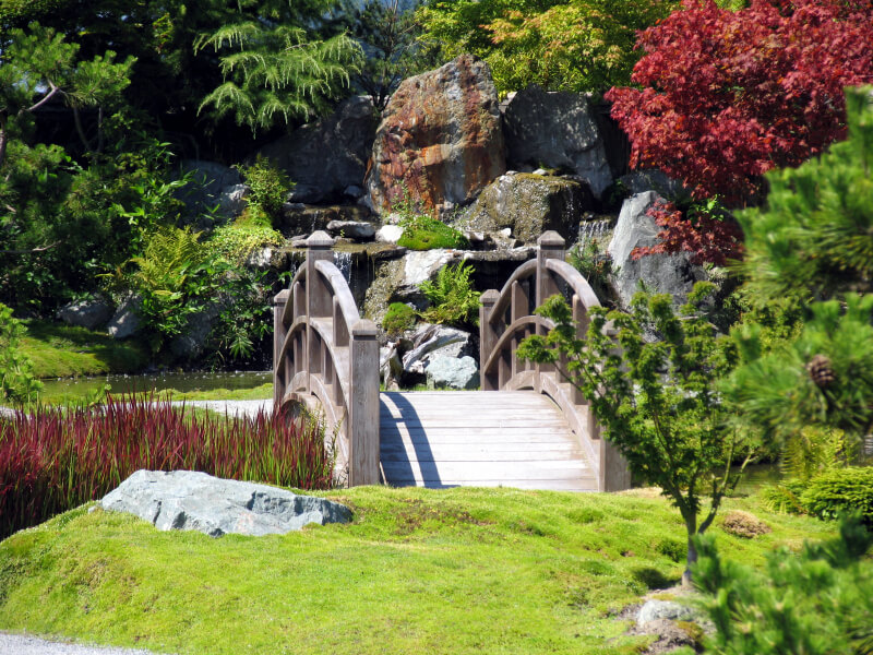 This lovely bridge is quite similar to the previous bridge, including a similar arrangement of ornamental maples. In the distance, we can see a large waterfall feature.