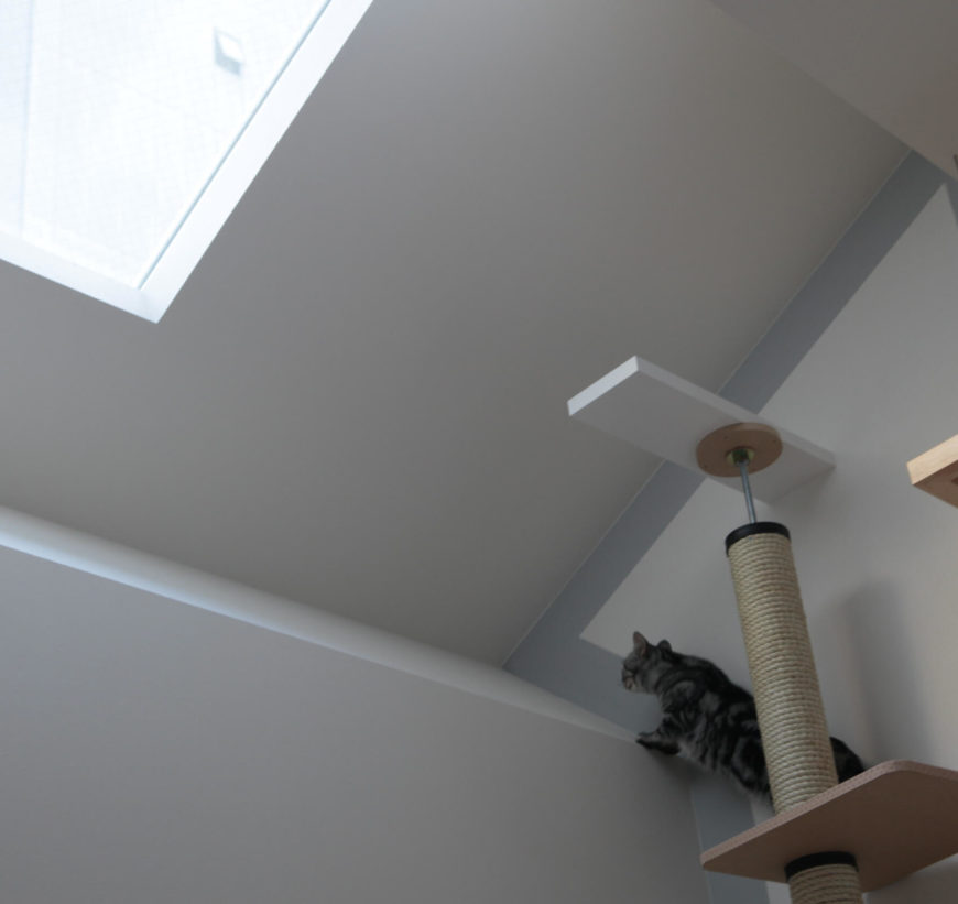 As we can see by the built-in cat tower extension, the family was very focused on making the home as perfect for the animals as it was for them.