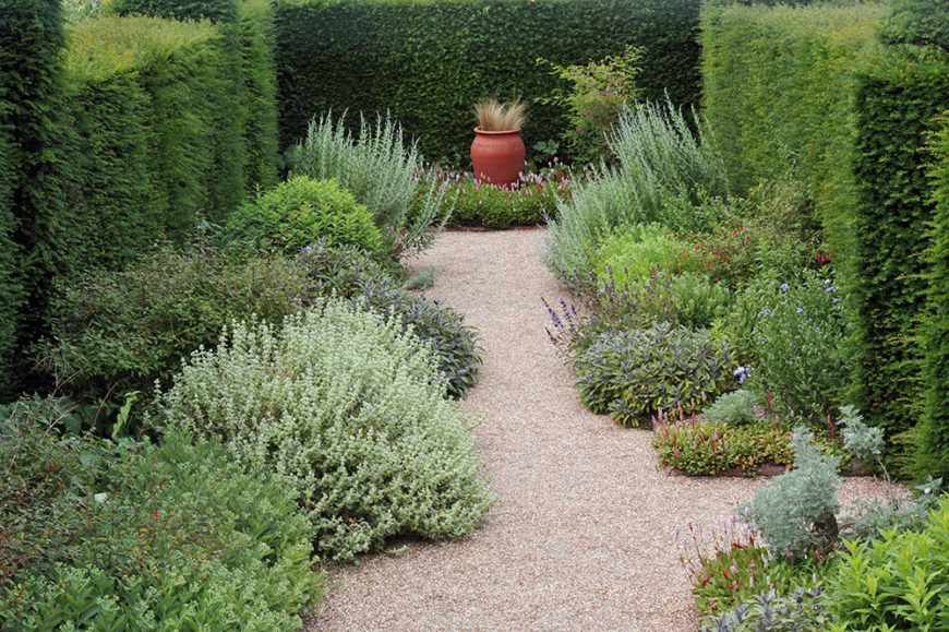 Bordering these squared hedges with bursts of loose, wild herbs and plants softens the hedges. This makes the space more visual interesting and creates an organically shaped walkway.