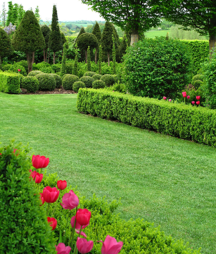 The many contrasting shapes and colors of this garden and the use of hedges creates much visual interest. The garden in the background is a great example of using different shapes to complement each other.