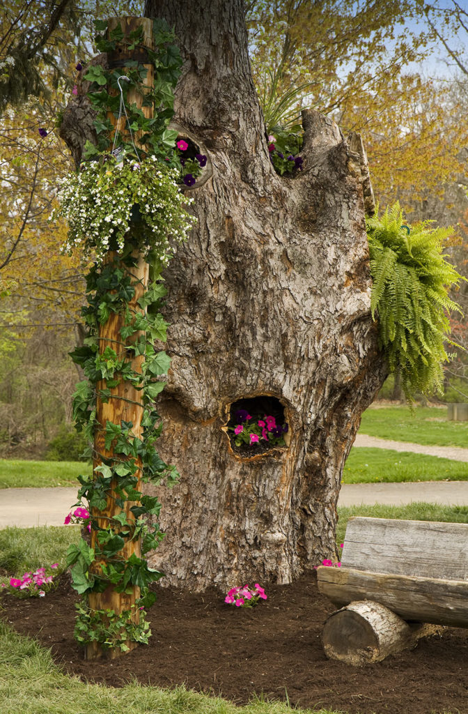 Have an old tree trunk that you want to get rid of? Don't! Use it as a natural planter. Making use of the hollows of the tree is creative problem solving.