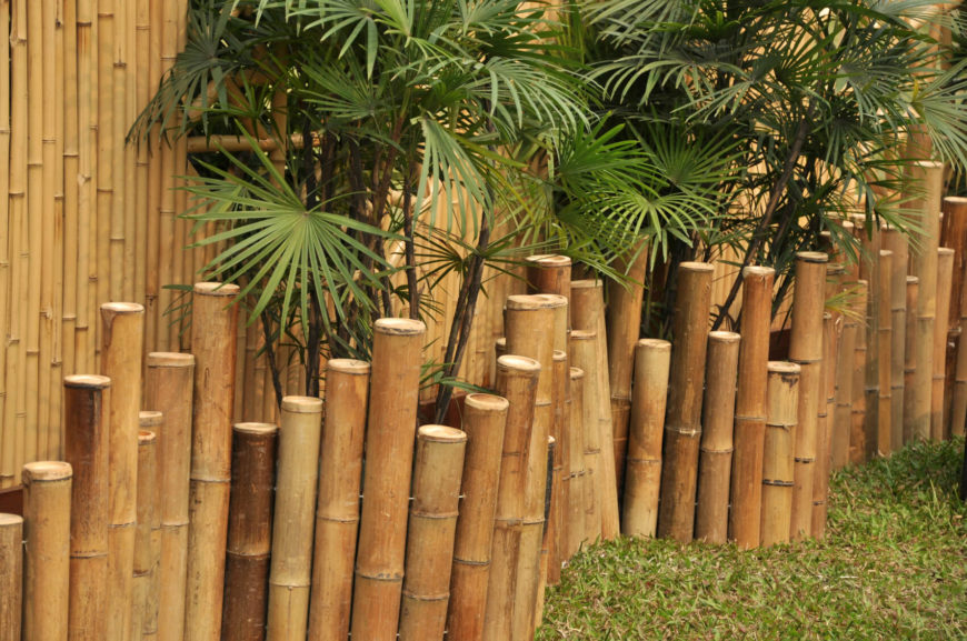 Another example of a shorter bamboo edging fence next to a larger privacy fence. The staggered design of the edging gives this backyard an exotic atmosphere.