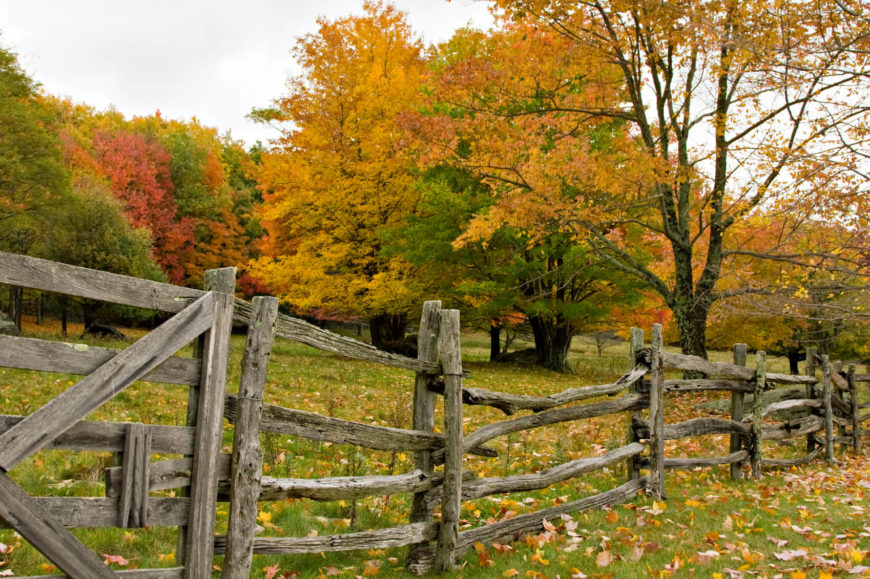 Beautiful colorful Autumn scene with split rail fence and Fall colors