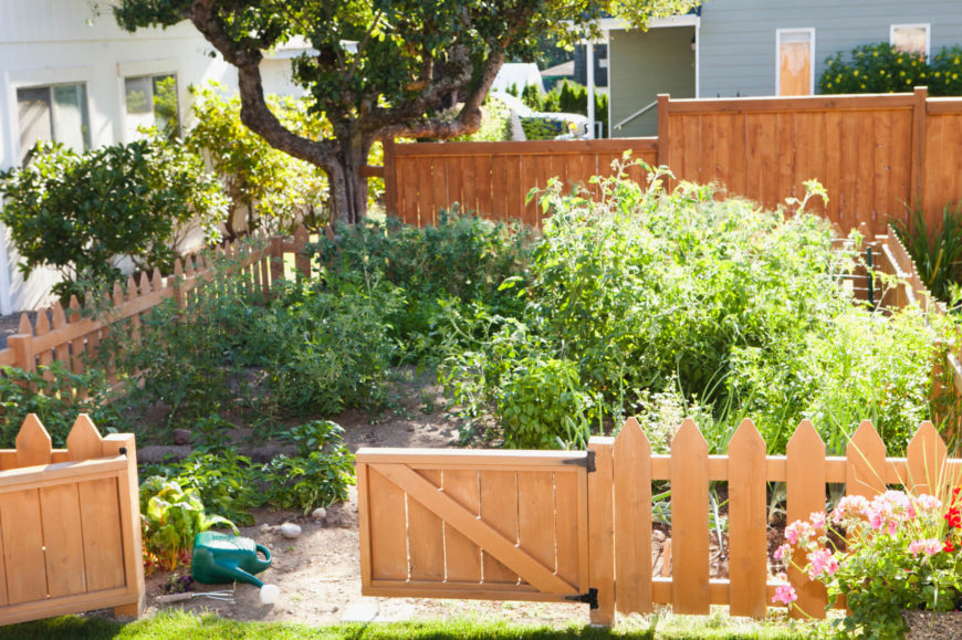 Picket fences are classic, but this fence does something new with the classic design with thicker pickets.