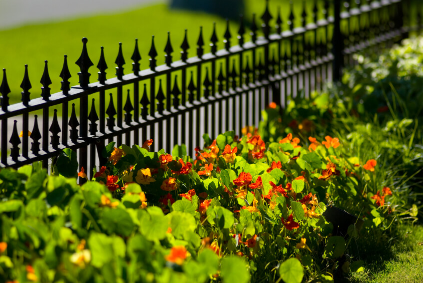 This short fence has extra spikes and, in contrast with the flowers, provides a dynamic look.