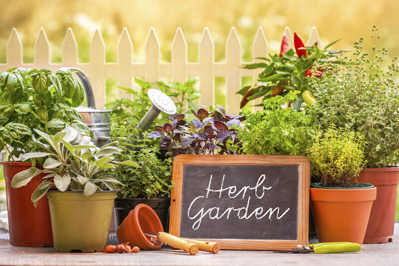 Vary the colors and materials as well. Herb gardens do especially well in container gardens, as it's easy to keep the different herbs separate.