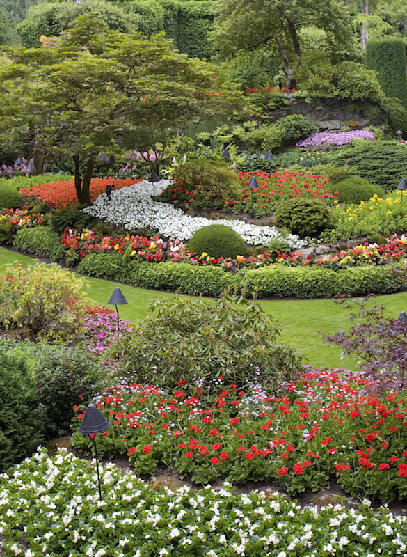 This garden extends into the distance, never seeming to end. A pathway of grass winds through the thick displays of ornamental trees, shrubs,and flower beds.