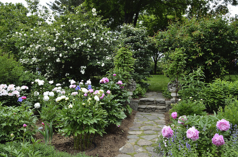 This garden is dense as well, filled with flowering ornamental trees and flowers with large, showy blooms.