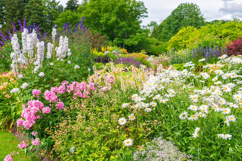 Thick planting beds filled with many different kinds of flowers, and featuring a variety of colors and textures.