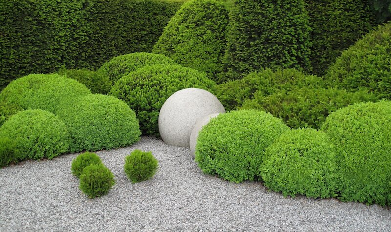 Each of these hedges is shaped into little topiary balls that match the concrete ones in the center.