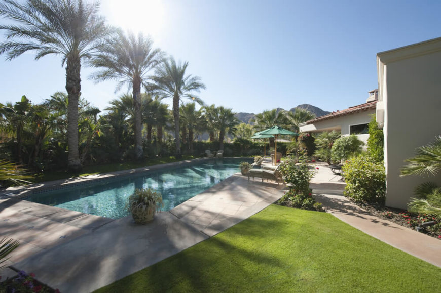 A more narrow swimming pool flanked by a row of large palm trees. Patio furniture along the side closest to the home rounds out the design.