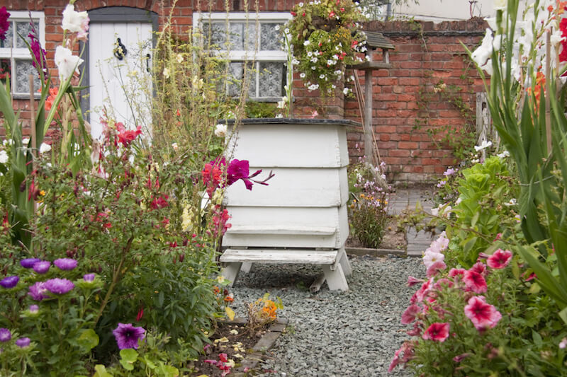 A simple white bee hive in the center of a gravel patio in the middle of a lush, colorful flower garden.