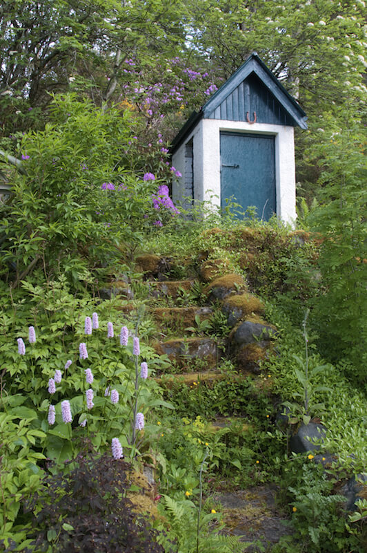 These moss-covered overgrown steps lead up to a garden shed at the top of the hill.