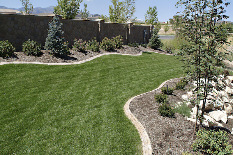 This yard has a snake-like section of grass between manicured planting beds.