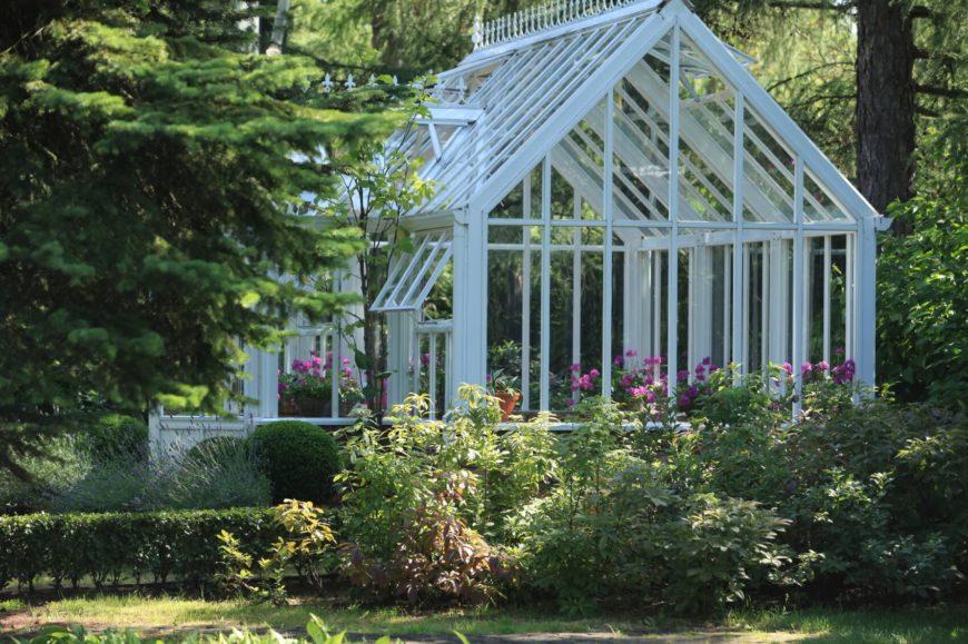 Huge glass greenhouse nestled in a garden.