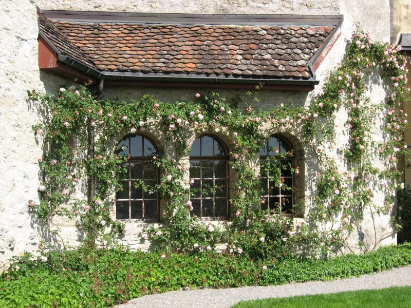 We love the contrast between the stone exterior of this country home and delicate pink climbing roses. Roses can be used to add a touch of femininity to a home.