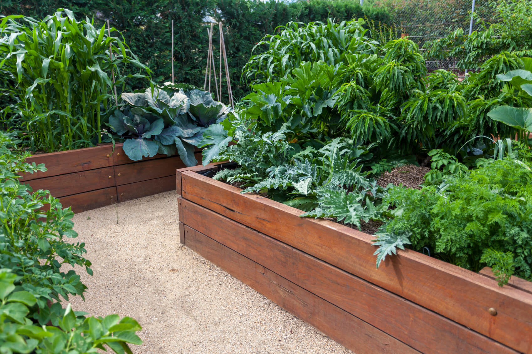 Ideas For Raised Garden Beds so maybe you arent looking for a unique design maybe you just want something that will keep your plants organized and looking sharp but will also be easy 41 Backyard Raised Bed Garden Ideas