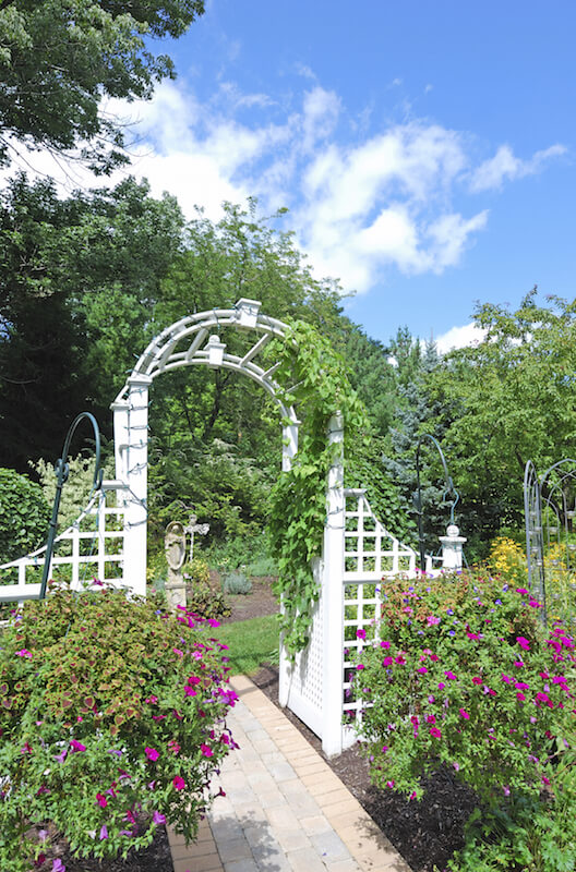 This delicate arbor is partially covered in climbing vines and is connected to a small fence-like section on either side.