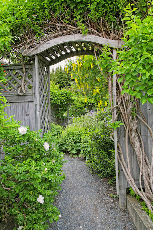 A wooden arbor with a curved top and attached to a tall privacy fence with lattice detailing. This acts as an entrance into the fenced-off garden.