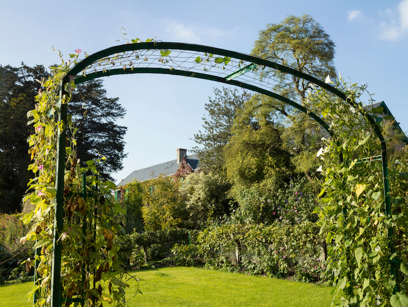 An Ultra Wide Arbor With A Simple Lattice Pattern In Wire. The Climbing  Vines