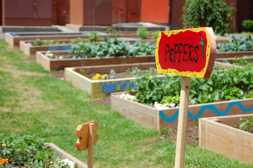 here is a vegetable garden that uses a number of small raised garden beds to organize