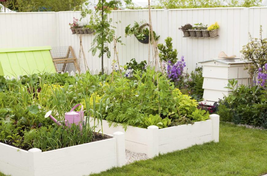 Here Is A Pretty And Well Designed Garden Area The White Raised Boxes Match